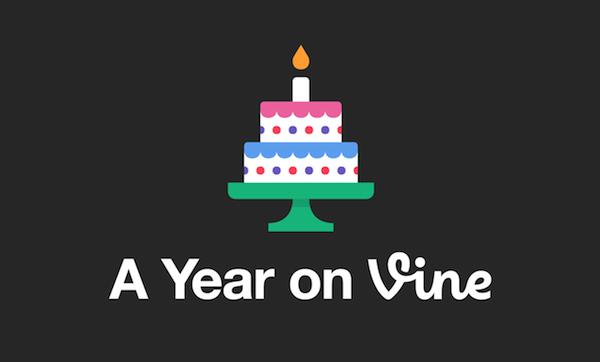 a-year-on-vine